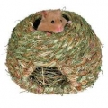 Ninho natural para Hamster